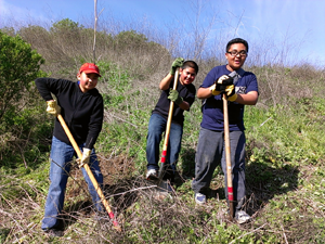 Volunteers planting native shrubs at Hanns Park.