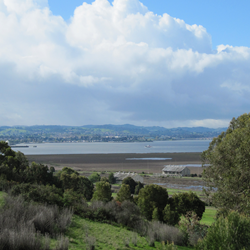 The view of Mare Island from the US Forest Service Regional Office.